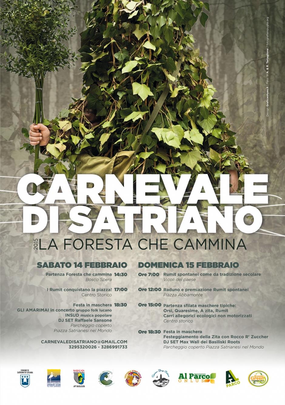 Carnevale di Satriano 2015 b48b52444b6