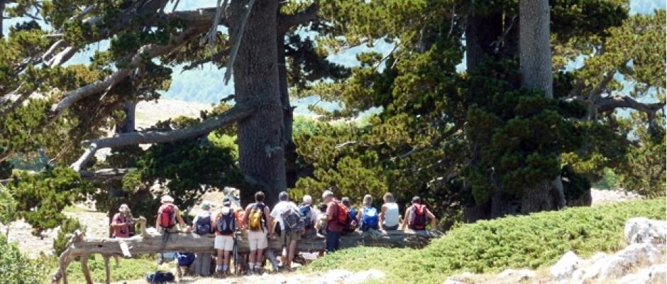 Escursione al giardino degli dei - Il giardino degli etruschi ...